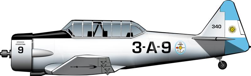 northamericantexanacoan1955