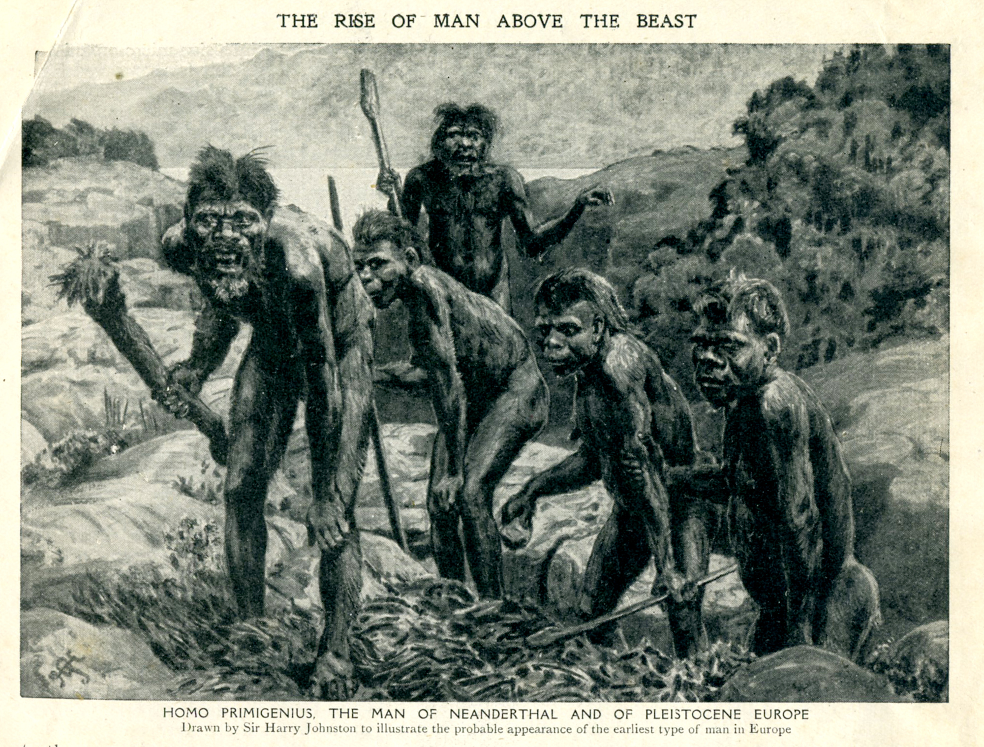 neandertalharmsworth