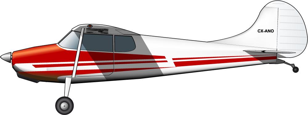 Una avioneta para la guerrilla urbana