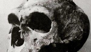 El neandertal de la Capilla de los Santos, por los hermanos Bouyssonie