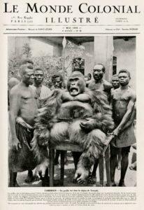 Un gorila muerto en la región de Yaundé