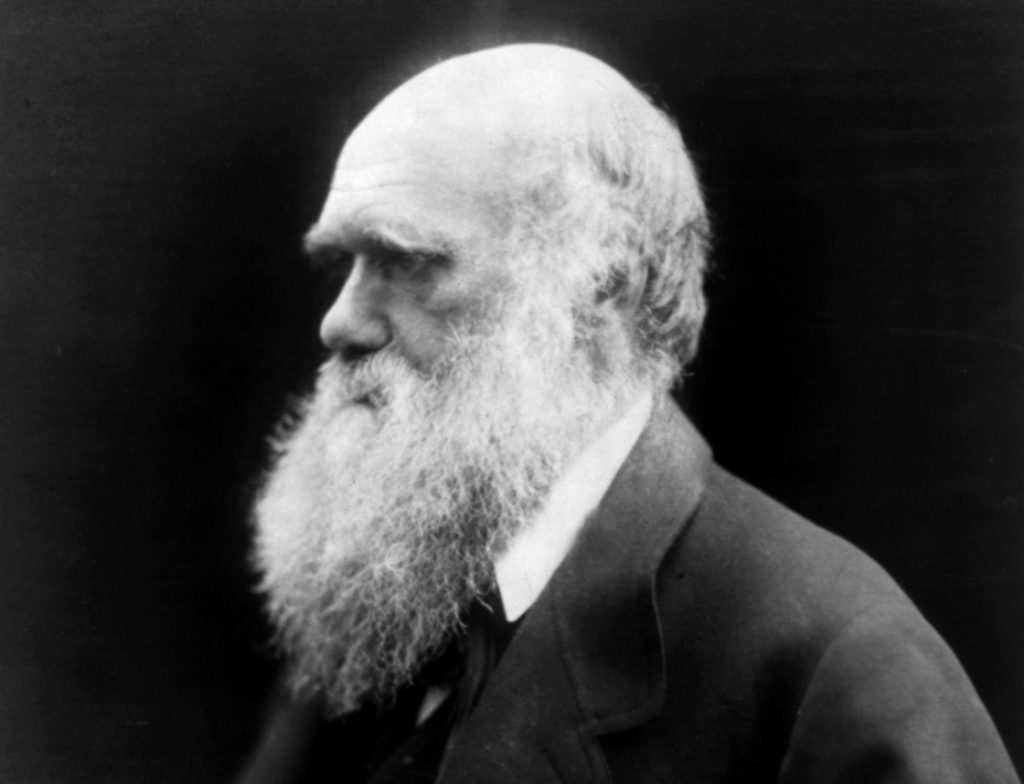 Tú y el darwinismo